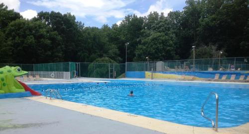 Lake Myers Cabin 7 In Mocksville Nc Swimming Pool Outdoor Pool Pets Allowed
