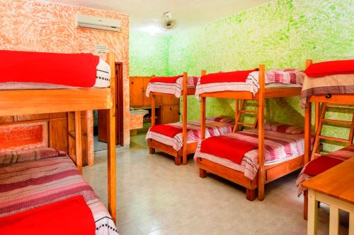 Amigos Hostel Cozumel Photo