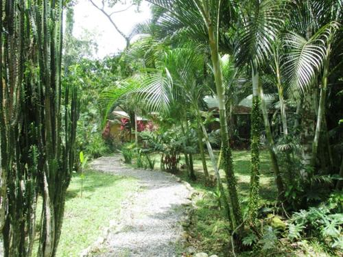 Jungle & Beach Home Puerto Viejo Photo