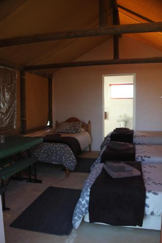 Assendelft Lodge and Bush Camp Photo