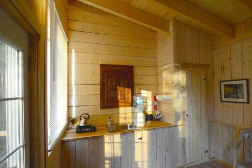 Talkeetna Cabins at Montana Creek Photo