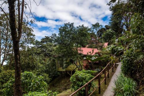 Paraíso Quetzal Lodge Photo