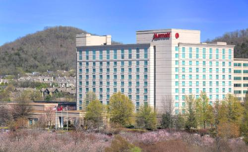 Franklin Marriott Cool Springs Photo