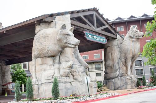 Great Wolf Lodge-Grapevine