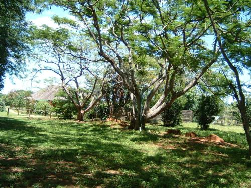 Sand Forest Lodge Hluhluwe Photo