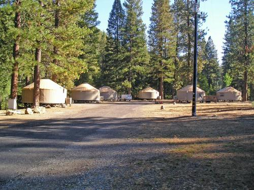 Yosemite Lakes Meadow Yurt 17 Photo