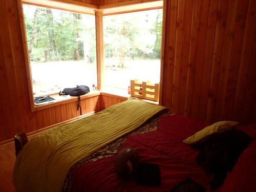 Wood Cabin Photo