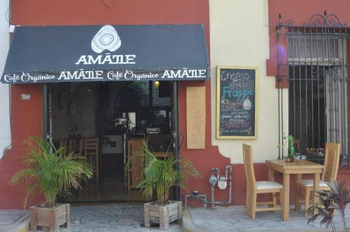 Amatle Cafe Organico & Hostel Photo