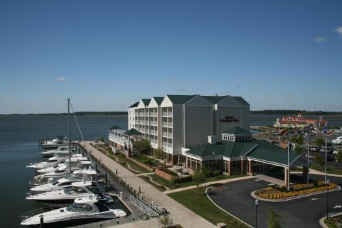 Hilton Garden Inn Kent Island Photo