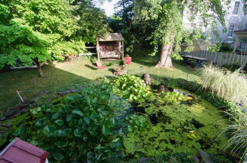 Lily Garden Bed and Breakfast Photo