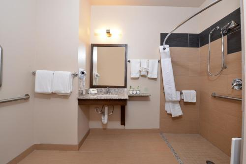 Holiday Inn Express & Suites Globe Photo
