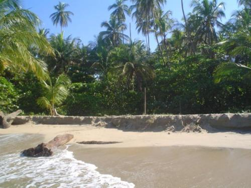 Playa Chiquita Lodge Photo