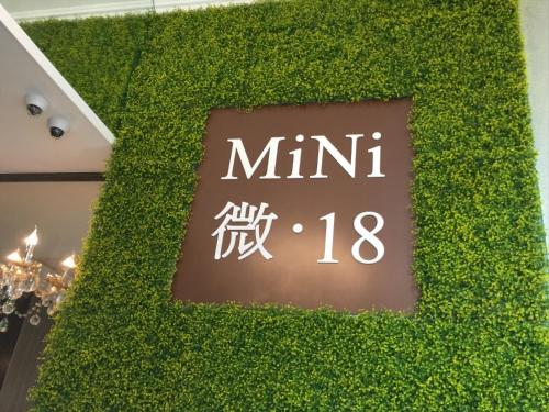 MiNi.18, Hong Kong