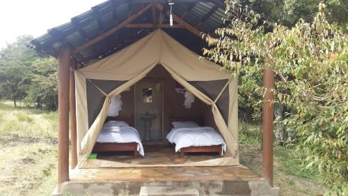 Mara Elephant Springs-Tented Camp, Ololaimutiek