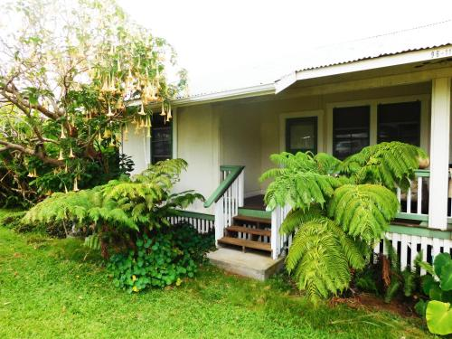 Hapuu at Pahala Plantation Cottages Photo