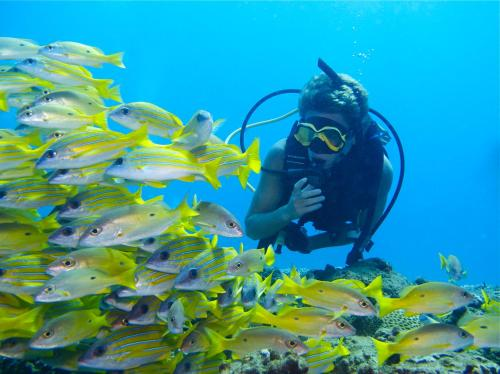 Coral Divers Photo