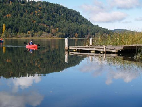Lakeshore on Salt Spring Photo