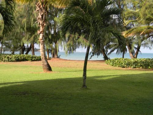 A Beach Front Property