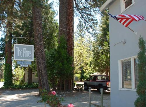 The Pines Motel and Cottages Photo