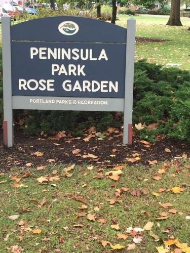 Hattie's Rose Garden Photo