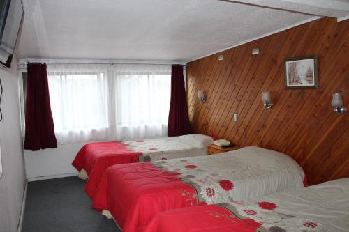 Hotel Osorno Reet Photo