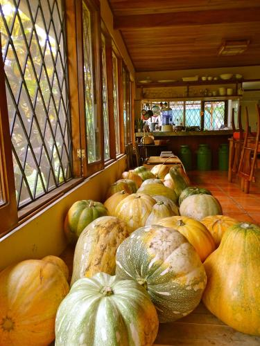 De La Tierra EcoHouse Farm Photo