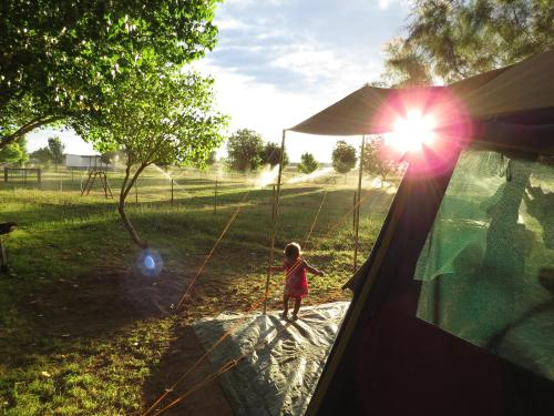 Karoo Gariep Tented Camp Photo