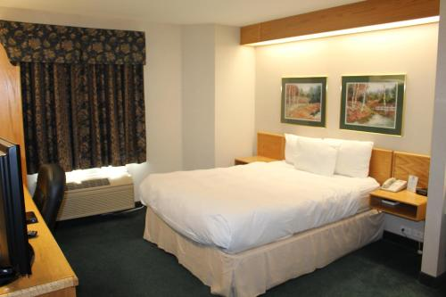 Canadas Best Value Inn Langley/Vancouver Photo