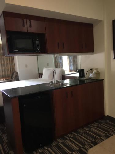 Microtel Inn & Suites by Wyndham Indianapolis Airport photo 28
