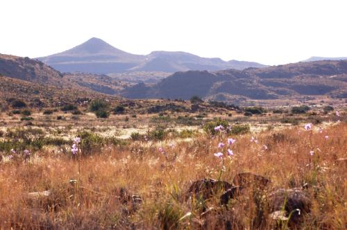 The Vale Karoo Farm Photo