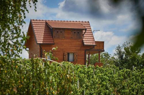 Holiday Home Seoski Turizam Pirak