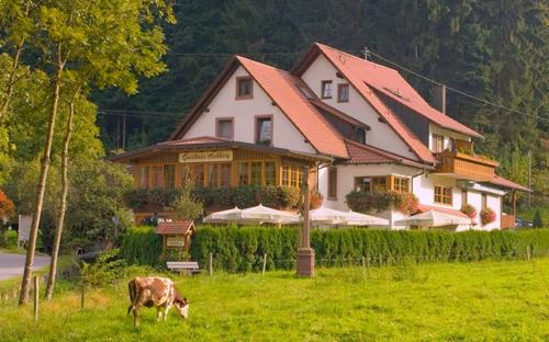 Gasthaus - Pension Hohberg