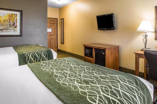 Comfort Inn & Suites Chillicothe Photo