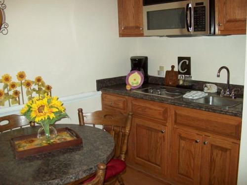 River Road Condo in the Heart of Gatlinburg (Unit 409) Photo
