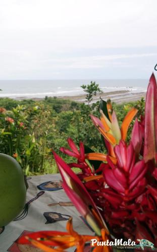 Punta Mala Lodge Photo