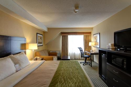 Comfort Inn Chatham Photo