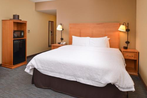 Hampton Inn & Suites Tampa-East/Casino/Fairgrounds Photo
