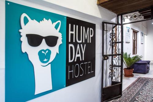 Hump Day Hostel Photo
