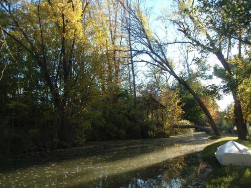 Sycamore Springs Photo