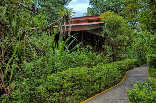 Pachira Lodge Photo