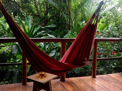 La Loma Jungle Lodge and Chocolate Farm Photo