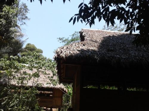 Ecolucerna lodge Photo