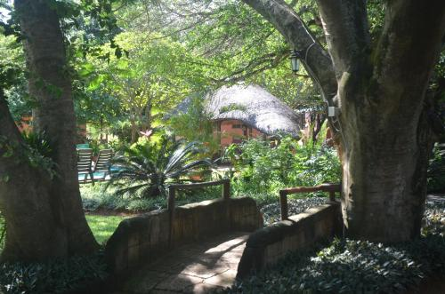Bushbaby Lodge Photo