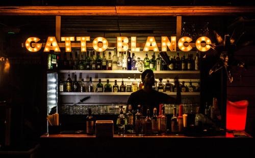 Hotel Gatto Blanco & Rooftop Club Photo
