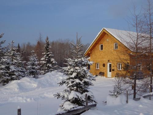 Les Chalets St-Fulgence Photo