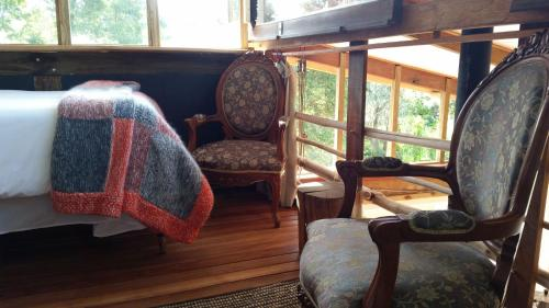 Boutique Vintage Forest Cabin Photo