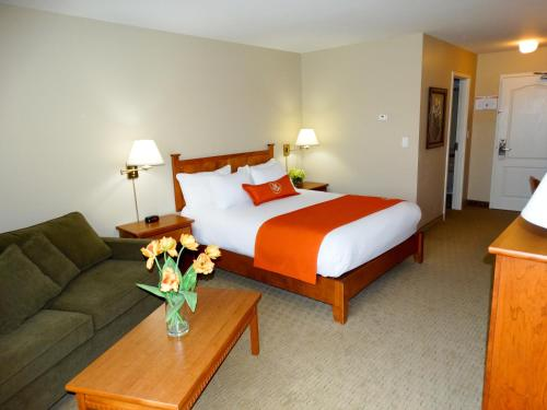 Quality Inn & Suites Amsterdam Photo