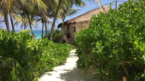 Casa Gaia Tulum Photo