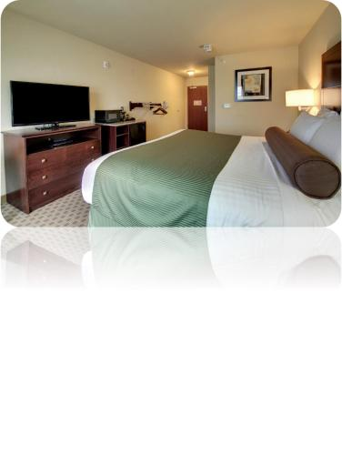 Cobblestone Inn & Suites Harvey Photo