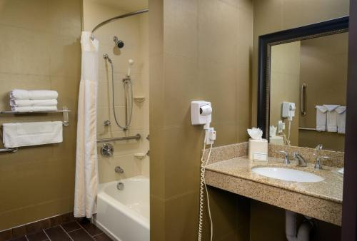Hilton Garden Inn Phoenix Airport North photo 14